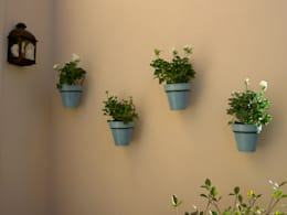 Jardines de estilo clásico por BAIRES GREEN