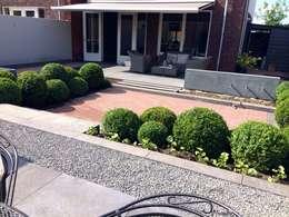 Jardines de estilo moderno por Hoveniersbedrijf Tim Kok