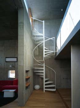 下小鳥の家: 桐山和広建築設計事務所が手掛けた玄関・廊下・階段です。
