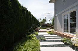 Jardines de estilo moderno por BEGRÜNDER