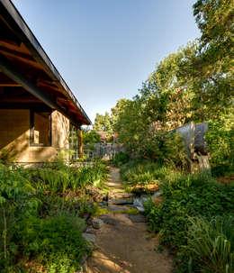 Isla Pino - Encino: Jardines de estilo moderno por TAAR / TALLER DE ARQUITECTURA DE ALTO RENDIMIENTO