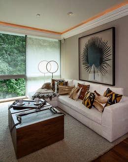 غرفة المعيشة تنفيذ Olivia Aldrete Haas