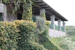 CASA DE PIEDRA: Casas de estilo rústico por Casas de Campo