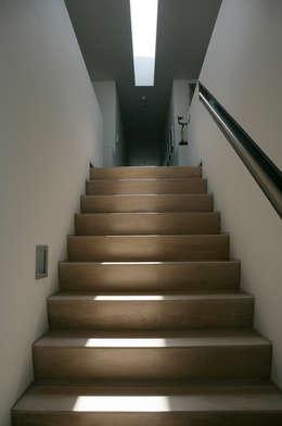 Corridor & hallway by Maas Architecten
