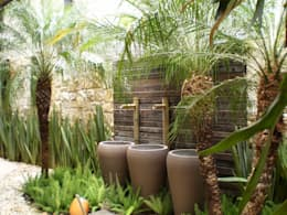 tropical Garden by ANALU ANDRADE - ARQUITETURA E DESIGN