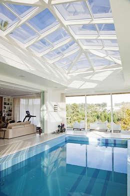Piscina Interna: Piscinas modernas por Ariane Labre Arquitetura