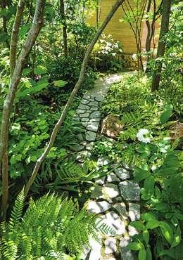 木漏れ日: 庭 遊庵が手掛けた庭です。