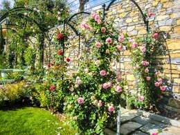Il giardino completato un anno dopo.:  in stile  di Gruppo Mati srl (MATI1909)