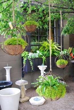 Jardim  por jardines verticales