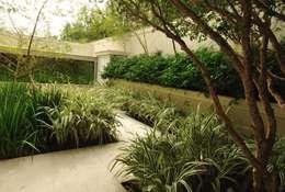 tropical Garden by alexandre galhego paisagismo