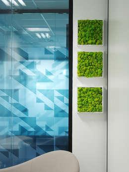 tableau lichen: Paysagisme d'intérieur de style  par Adventive
