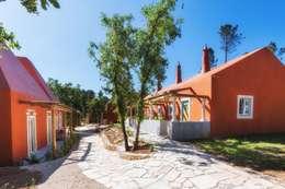 Jardines de estilo rural por SegmentoPonto4