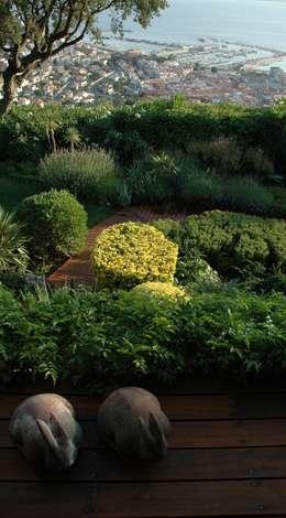 Projekty,  Ogród zaprojektowane przez ruiz narvaiza associats sl