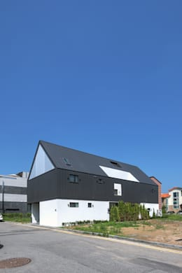 modern Houses by mlnp architects