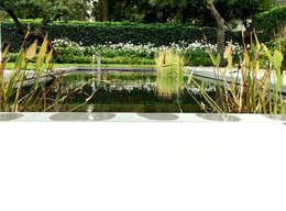 Strakke vijver met waterspel: moderne Tuin door Stoop Tuinen