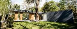 Casa AP: Jardines de estilo moderno por Felipe Gonzalez Arzac