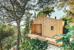 dom arquitectura의  주택