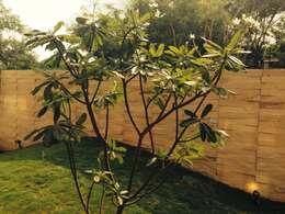 Jardines de estilo moderno por studio XS