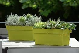 Balcones, porches y terrazas de estilo moderno por Blumenweide GmbH & Co.KG