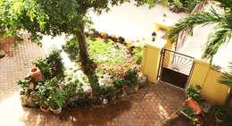 entree: tropische Tuin door architectenbureau Aerlant Cloin BNA