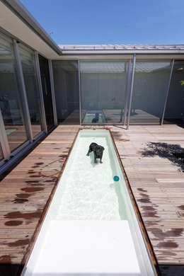 banhaus: ジャムズが手掛けたプールです。
