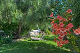 Jardines de estilo moderno por Emilio Rescigno - Fotografia Immobiliare