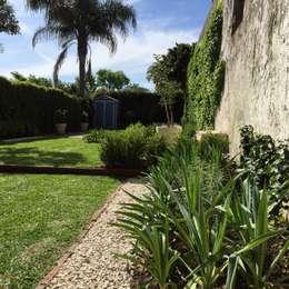 pequeños espacios: Jardines de estilo moderno por BAIRES GREEN