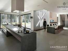 modern Kitchen by LK & Projekt Sp. z o.o.