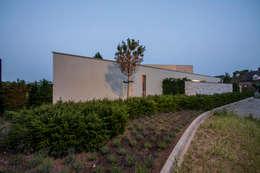 Villa aan de rand van natuurgebied : moderne Huizen door Engelman Architecten BV