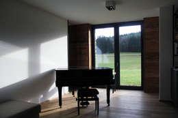 غرفة الميديا تنفيذ Architekt Zoran Bodrozic