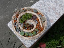 Сады в . Автор – rote_libelle