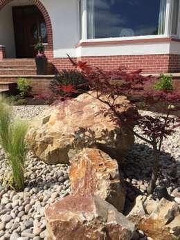 minimalistic Garden by Anne Macfie Garden Design