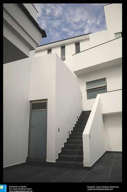 las escaleras: Pasillos y recibidores de estilo  por Excelencia en Diseño