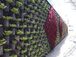Jardines de estilo moderno por ENFOQUE CONSTRUCTIVO