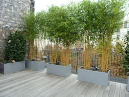 Balcon, Veranda & Terrasse de style de style Moderne par homify