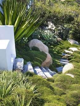 Projekty,  Ogród zaprojektowane przez CPJP S.L.