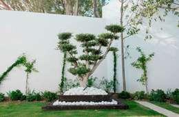 Projekty,  Ogród zaprojektowane przez Beatrice Perlac - Adarve Jardines