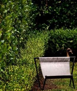 CASA EN SAN ISIDRO: Jardines de estilo moderno por Arq. PAULA de ELIA & Asociados