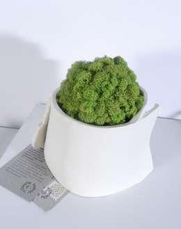 """Vaso """"Abbraccio"""" con sfera di licheni stabilizzati: Paesaggio d'interni in stile  di Ceramica Artistica di Chiara Cantamessa"""