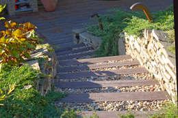 Ogród z tarasem: styl , w kategorii Ogród zaprojektowany przez Pracownia Projektowa Architektury Krajobrazu Januszówka