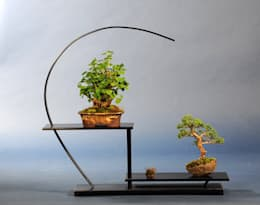 Bonsai-Shopping의  정원