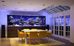 Salas de jantar modernas por Aquarium Architecture
