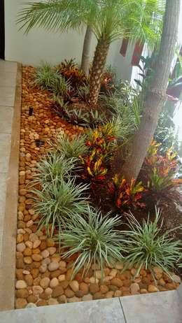 Jardinera en Vestíbulo de acceso - detalle final:  de estilo  por EcoEntorno Paisajismo Urbano
