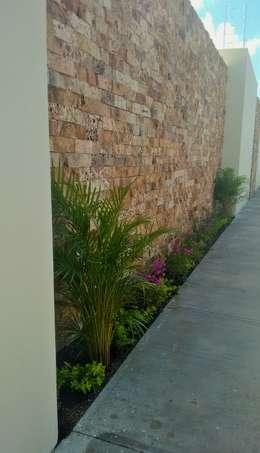 Jardinera exterior - después:  de estilo  por EcoEntorno Paisajismo Urbano