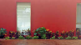 Jardinera en Garage - final:  de estilo  por EcoEntorno Paisajismo Urbano