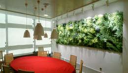 Edificios de Oficinas de estilo  por Muros Frescos