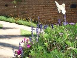 Jardin de style de style eclectique par milena oitana