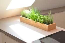 Livings de estilo moderno por Fang Interior Design
