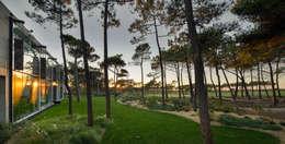 minimalistic Garden by guedes cruz arquitectos