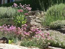Jardim de aromáticas: Jardins campestres por andré nascimento-arquitetura paisagista